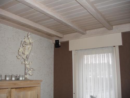 Beste hout plafonds, grenen, ceder, planchetten, beplanking MT-78